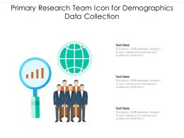 Primary Research Team Icon For Demographics Data Collection