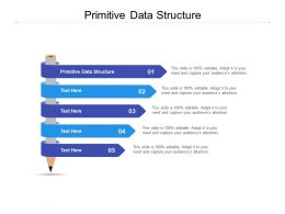 Primitive Data Structure Ppt Powerpoint Presentation Portfolio Show Cpb