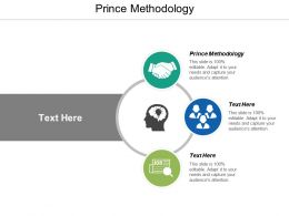 Prince Methodology Ppt Powerpoint Presentation Model Summary Cpb