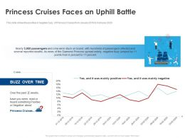Princess Cruises Faces An Uphill Battle Ppt Model