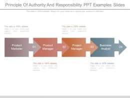 Principle Of Authority And Responsibility Ppt Examples Slides