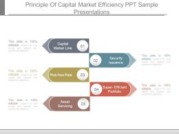 Principle Of Capital Market Efficiency Ppt Sample Presentations