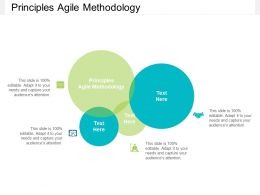 Principles Agile Methodology Ppt Powerpoint Presentation Outline Cpb