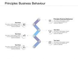 Principles Business Behaviour Ppt Powerpoint Presentation Gallery Grid Cpb