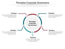 Principles Corporate Governance Ppt Powerpoint Presentation Show Icon Cpb