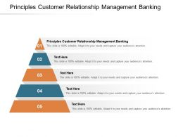 Principles Customer Relationship Management Banking Ppt Powerpoint Presentation Cpb