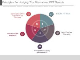 Principles For Judging The Alternatives Ppt Sample