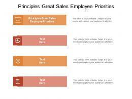 Principles Great Sales Employee Priorities Ppt Powerpoint Presentation Ideas Outfit Cpb
