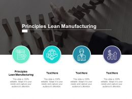 Principles Lean Manufacturing Ppt Powerpoint Presentation Portfolio Cpb