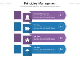 Principles Management Ppt Powerpoint Presentation Ideas Graphics Example Cpb