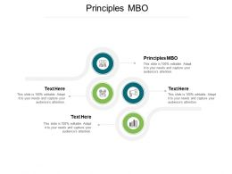 Principles MBO Ppt Powerpoint Presentation Outline Infographics Cpb