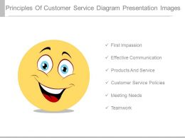 Principles Of Customer Service Diagram Presentation Images