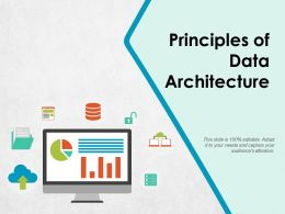 Principles Of Data Architecture Ppt Pictures Background Images