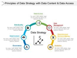 Principles Of Data Strategy With Data Content And Data Access