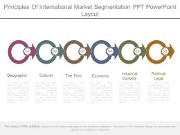 Principles Of International Market Segmentation Ppt Powerpoint Layout