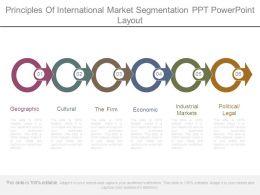 principles_of_international_market_segmentation_ppt_powerpoint_layout_Slide01