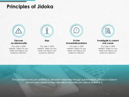 Principles Of Jidoka Immediate Problem Ppt Powerpoint Presentation Icon Samples