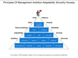 Principles Of Management Ambition Adaptability Sincerity Honesty
