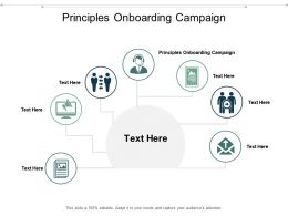 Principles Onboarding Campaign Ppt Powerpoint Presentation Slides Example Cpb