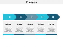 Principles Ppt Powerpoint Presentation Inspiration Gridlines Cpb