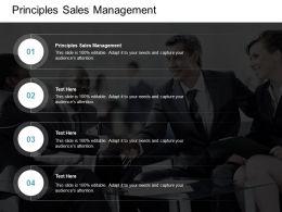 Principles Sales Management Ppt Powerpoint Presentation Design Ideas Cpb