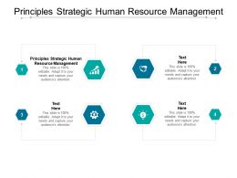 Principles Strategic Human Resource Management Ppt Powerpoint Presentation Gallery Introduction Cpb