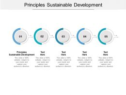 Principles Sustainable Development Ppt Powerpoint Presentation Slides Tips Cpb