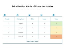 Prioritization Matrix Of Project Activities
