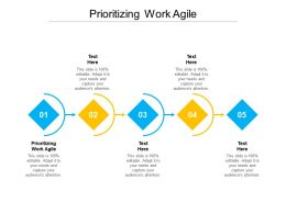 Prioritizing Work Agile Ppt Powerpoint Presentation Summary Example Topics Cpb