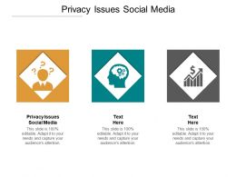Privacy Issues Social Media Ppt Powerpoint Presentation Icon Picture Cpb