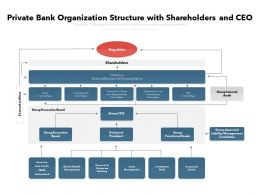 Private Bank Organization Structure With Shareholders And CEO
