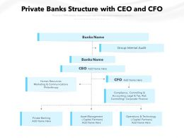 Private Banks Structure With CEO And CFO