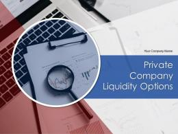 Private Company Liquidity Options Powerpoint Presentation Slides