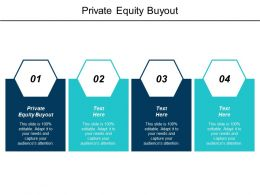Private Equity Buyout Ppt Powerpoint Presentation Model Visual Aids Cpb