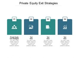 Private Equity Exit Strategies Ppt Powerpoint Presentation Infographic Template Outline Cpb
