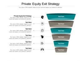 Private Equity Exit Strategy Ppt Powerpoint Presentation Gallery Influencers Cpb