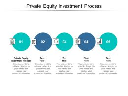 Private Equity Investment Process Ppt Powerpoint Presentation Infographic Template Cpb