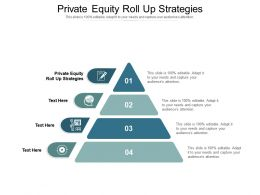 Private Equity Roll Up Strategies Ppt Powerpoint Presentation Model Templates Cpb