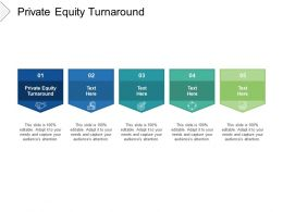Private Equity Turnaround Ppt Powerpoint Presentation File Infographics Cpb