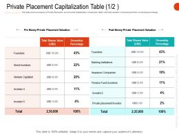 Private Placement Capitalization Table Ownership Ppt Clipart Images