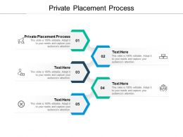 Private Placement Process Ppt Powerpoint Presentation Professional Cpb