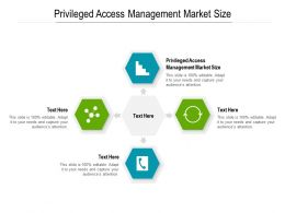 Privileged Access Management Market Size Ppt Powerpoint Presentation Infographics Slide Cpb