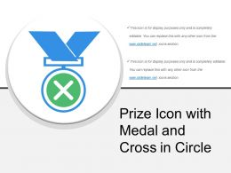 Prize Icon With Medal And Cross In Circle