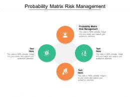 Probability Matrix Risk Management Ppt Powerpoint Presentation Infographics Rules Cpb