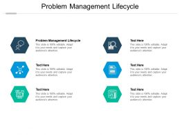 Problem Management Lifecycle Ppt Powerpoint Presentation Outline Layout Cpb