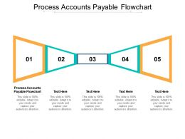 Process Accounts Payable Flowchart Ppt Powerpoint Presentation Infographic Template Graphic Images Cpb