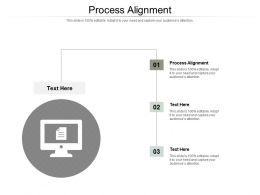 Process Alignment Ppt Powerpoint Presentation Inspiration Themes Cpb