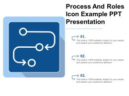 Process And Roles Icon Example Ppt Presentation
