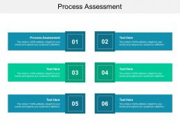 Process Assessment Ppt Powerpoint Presentation Summary Infographics Cpb