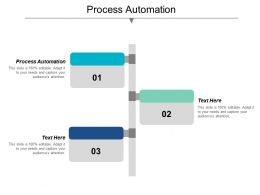 Process Automation Ppt Powerpoint Presentation Gallery Slides Cpb
